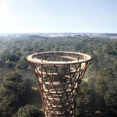 Camp Adventure Treetop experience in Greater Copenhagen