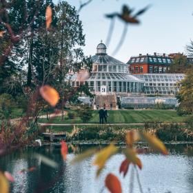 Botanical Garden in Copenhagen in autumn