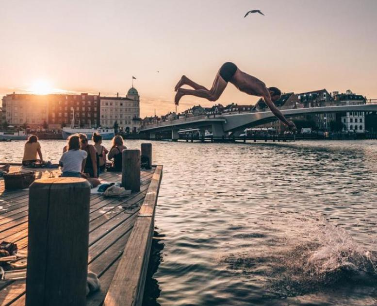 Evening swim in Copenhagen harbour
